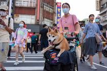 Localnică din Taiwan