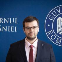 Radu Nicolescu, consilier de stat