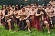 Luptatori Maori