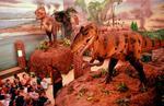 Dinozauri muzeu