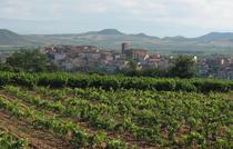 Vie Rioja