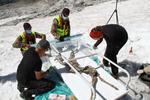 Capra neagra mumificata gasita in Alpi