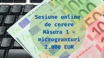 Sesiune de cerere Măsura 1 - microgranturi 2.000 EUR-2