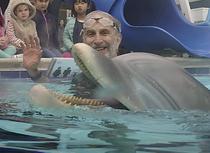delfinul robot
