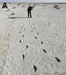 Urme de femeie vechi de 13.000 de ani