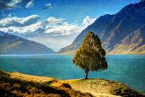 Peisaj Noua Zeelanda