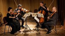 Cvartetul ARCADIA: Foto Virgil Oprina