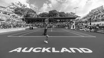 Turneul de la Auckland