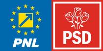 PNL-PSD