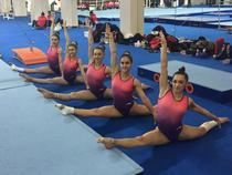 Echipa de gimnastica a Romaniei