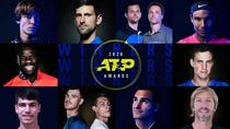 Castigatorii premiilor ATP in 2020