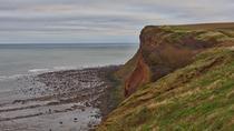 Tarm Marea Nordului