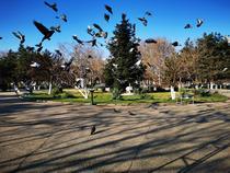 Parcul Crangasi - foto