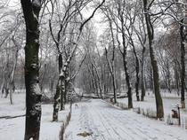 Iarna - zapada