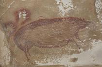 Un porc de acum 45.000 de ani