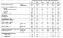 Prognoza pentru bugetul pe 2021