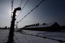 Ziua internaţională de comemorare a Holocaustului