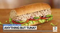 Sandvis cu ton Subway