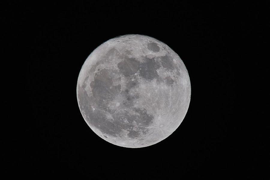image-2021-02-10-24594982-70-luna.jpg