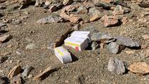 Medicamente aruncate pe malul lacului Tarnita