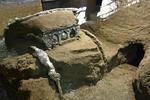 trăsură ceremonială antică descoperita în apropiere de Pompeii