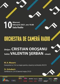 Calatorie muzicala in Viena imperiala