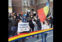 Protest Timisoara