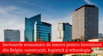 Sectoare economice pentru investitorii din Belgia