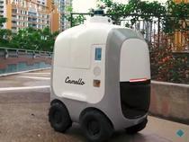 Unul dintre robotii Camello