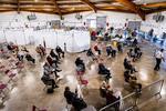 Vaccinare in Perpignan, Franta