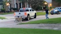 Tigrul din Houston