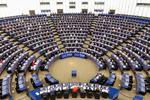 Sesiunea Parlamentului European din februarie 2020, Strasbourg