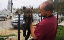 Ursuleti salvati