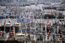 Vase de pescuit ale Chinei