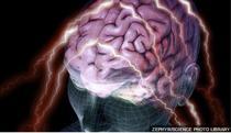 Creierul neobosit