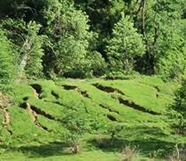 Alunecare de teren în judetul Buzau
