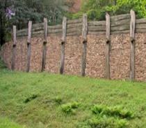 Zid galic