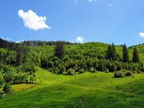 Peisaj de iunie la munte