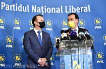 Florin Citu si Ludovic Orban