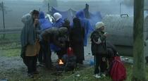 Migranti, Lituania