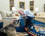 Joe Biden cu cainele Champ