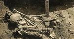 scheletul celei mai vechi victime a unui atac de rechin