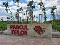 Parcul Teilor 30