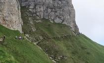Turisti pe munte