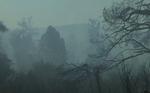 incendii de vegetatie Grecia