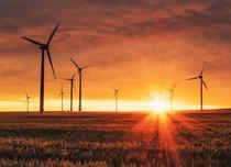 Cum își pot optimiza companiile consumul de energie