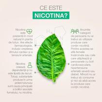 Rolul și impactul nicotinei în cazul fumatului