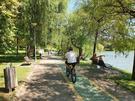 Biciclete in Parcul IOR - 5