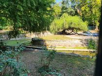 Parcul Cismigiu - septembrie 13