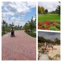 Dezbatere publică parcuri
